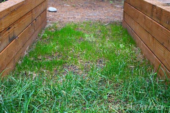 Dig For Your Dinner – Backyard Kitchen Garden Photos 10/25/15