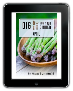 Dig For Your Dinner April eBook