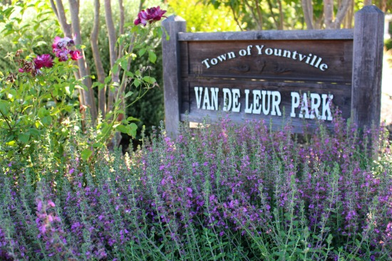 Van De Leur Park in Yountville, California