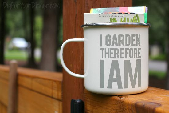 Dig For Your Dinner – Backyard Kitchen Garden Photos 9/6/15