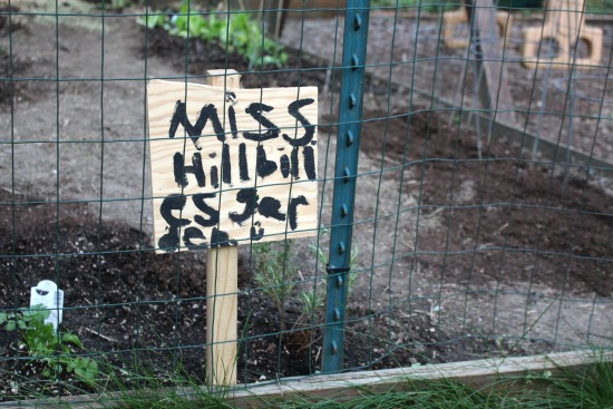 Mrs. Hillbilly Plants a Garden