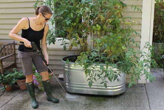 Thankless Garden Chores