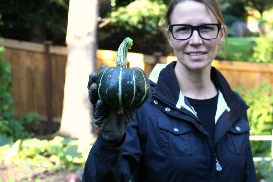 Harvesting Hubbard Squash and Other Fun Stuff