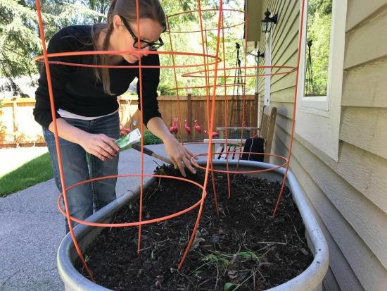 A Week in Garden Photos – May 8th– May 14
